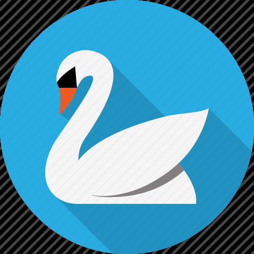 animal, bird, calm, fairy, swan, zoo icon