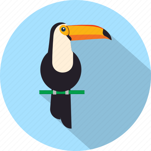 bird, forest, jungle, toucan, tree, zoo icon