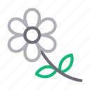 capture, floral, flower, nature, photography icon