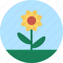 flower, grass, leaf, macro icon