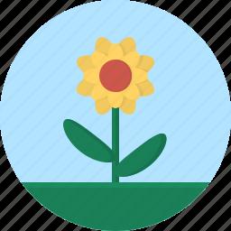 flower, grass, leaf, macro icon