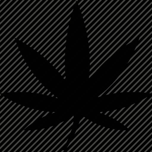hemp, plant icon