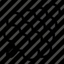 cone, object, pine, round, segments, tree, white