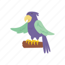 adventure, bird, ocean, parrot, pirate icon