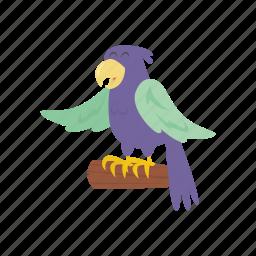 adventure, bird, ocean, parrot, pirate icon