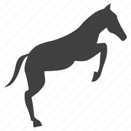 animal, bucking, equine, hoof, horse, mammal, monochrome, race, rodeo, stencil, stud, wild icon