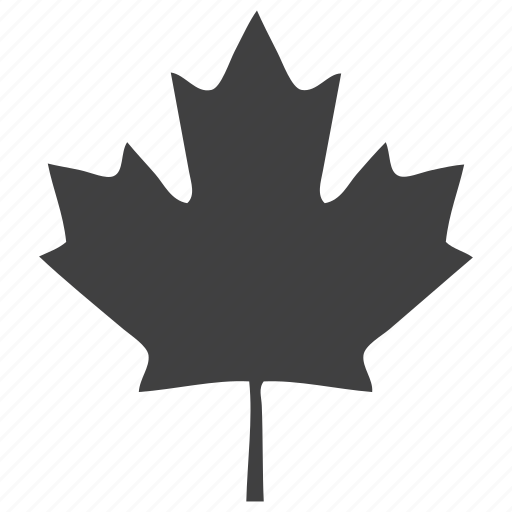 canada, leaf, oak, plants, tree icon