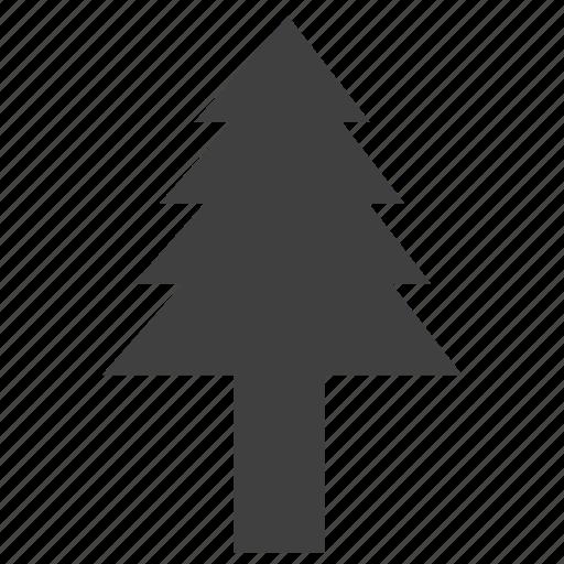 christmas, leaves, tree, wisdom, x-mas icon