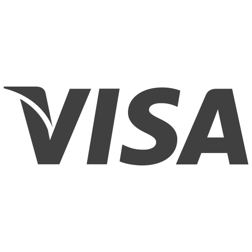 card, debit, dredit, money, payment, transaction, visa icon