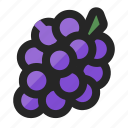 berry, cooking, food, fruit, funky, grape, juicy icon