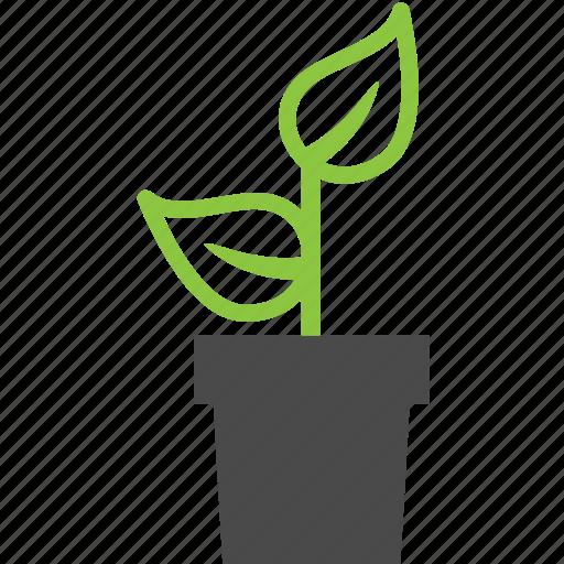 ecology, nature, plant, pot icon