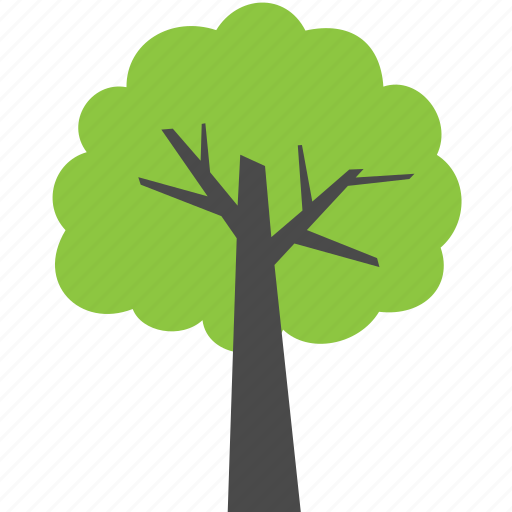 ecology, green, leaf, plant, tree, wood icon