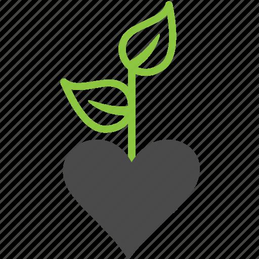 heart, love, plant, tree icon