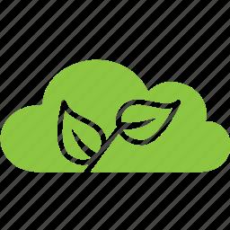 cloud, nature, plant, tree icon
