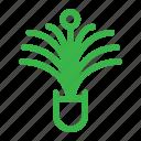 plant, leaf, green, nature