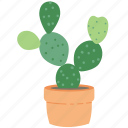 green, flower, plant, nature, eco, cactus icon