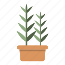 ecology, garden, green, herb, leaf, nature, plant icon