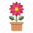 blossom, farming, garden, nature, potted, red, x'mas flower icon