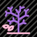 autumn, bare tree, branches, fall, nature, tree, twigs icon