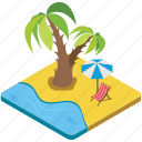 beach, nature, palm tree, seaside, summer