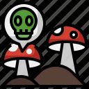 mushroom, muscaria, organic, vegan, vegetarian