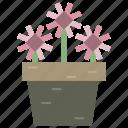 floweret, horticulture, plant, pot icon