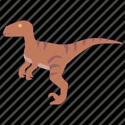 carnivore, cretaceous, deinonychus, dinosaur, raptor, velociraptor icon