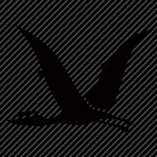 dinosaur, flying, jurassic, pterodactyl, pterosaur, winged icon