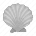 animal, malyusk, nature, ocean, sea, shell icon