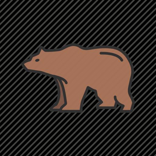 Animal, bear, bear market, brown bear icon - Download on Iconfinder
