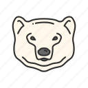 animal, bear, bear market, polar bear icon
