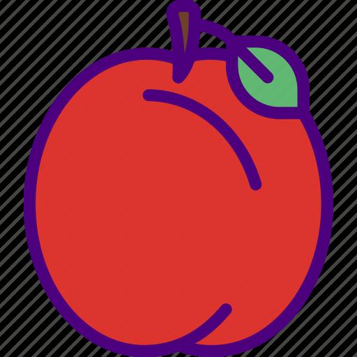 apple, education, learn, school, teacher icon
