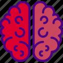 brain, doctor, hospital, medic, medicine icon