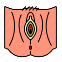 female, reproductive system, vagina, vulva icon