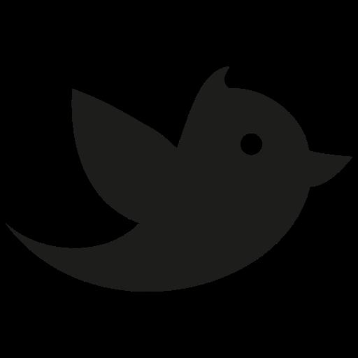 eye, twitter icon