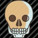 skull, death, harmful, danger, unhealthy