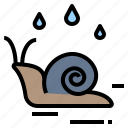 animal, rainy, wet, moisture, snail, gastropod icon