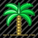 palm, tree, ramadan, plant, desert
