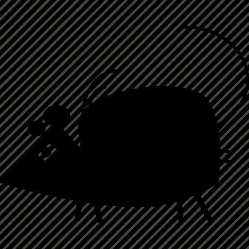 animal, mice, mouse, pest, rat, rats, wild icon