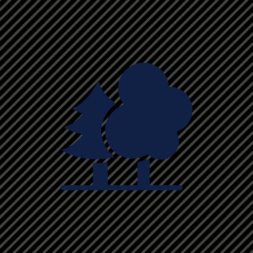 ecology, jungle, nature, park, plant, tree, tree icon icon