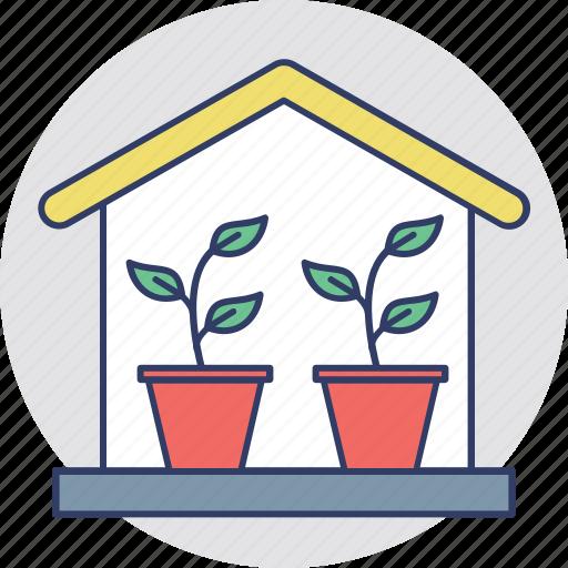 eco friendly, ecological house, ecology, glasshouse, greenhouse icon