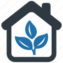 indoor, plant, ecology, flower, garden, nature, tree