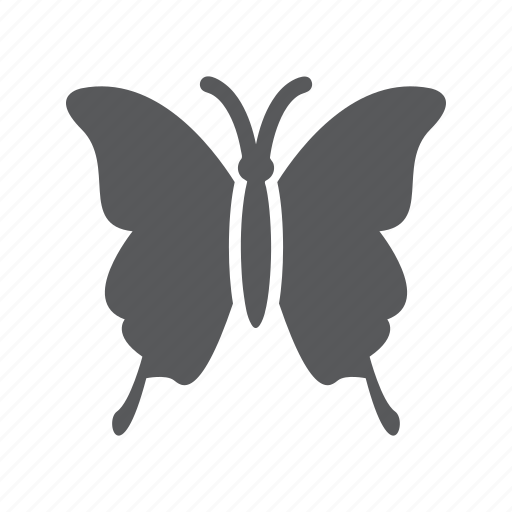 Animal, butterfly, insect icon - Download on Iconfinder