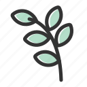 bible, leaf, leaves, olive, peace, plant, relicons icon