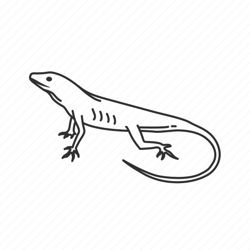 Anole lizard, lizard, reptile icon - Download on Iconfinder