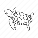 baby sea turtle, marine turtle, reptile, turtle icon