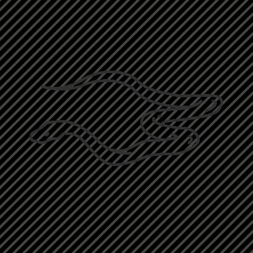 black momba, poisonous, reptile, serpant, serpent, snake, venom icon