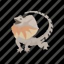 animal, dragon lizard, frill-neck lizard, frilled dragon, invertebrate, lizard, reptile icon
