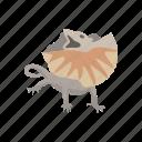 lizard, animal, dragon lizard, reptile, frill-neck lizard, frilled dragon, invertebrate icon