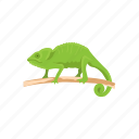 animal, chameleon, chameleon lizard, lizard, pet, reptile icon